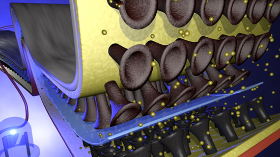 IfM researchers create ultraflexible battery